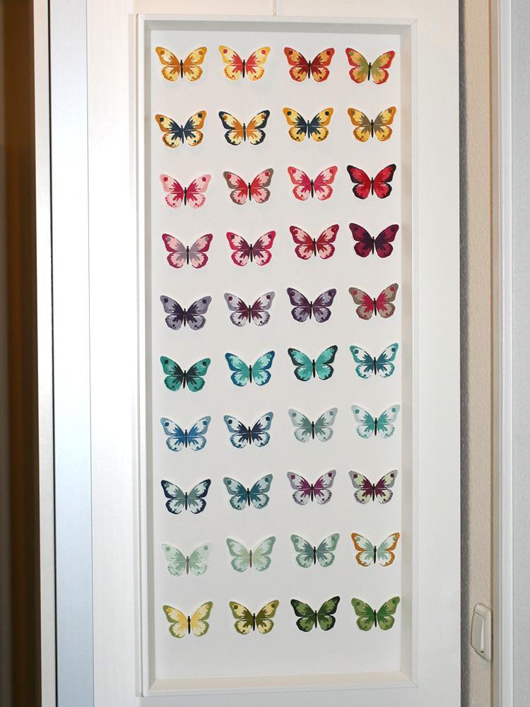 Schmetterlings-BIld