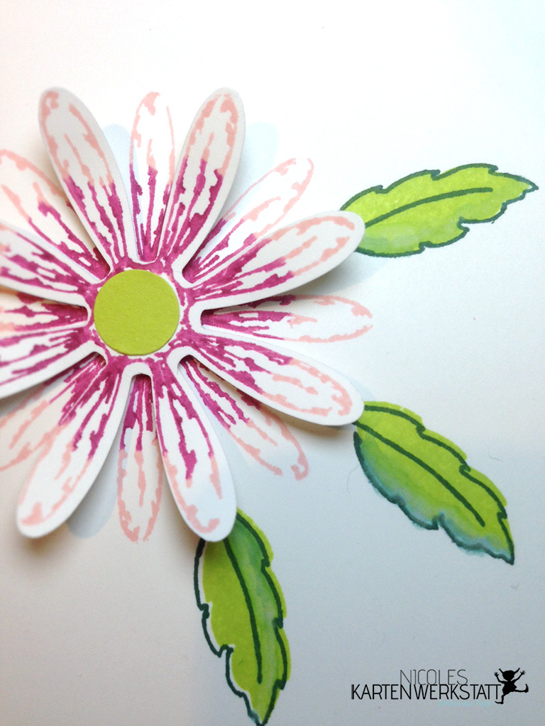 Gnseblümchen